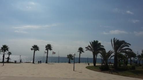 Playa Flamenca.
